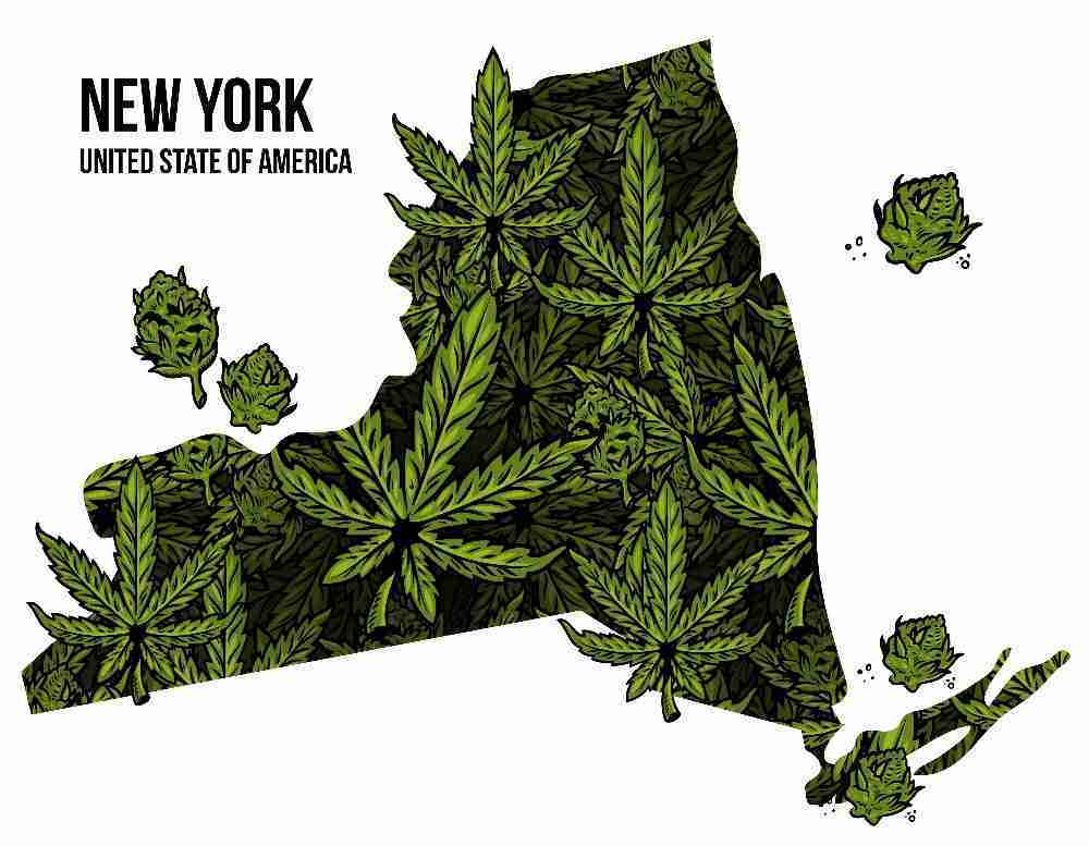 New York map with hemp and cannabis leaves