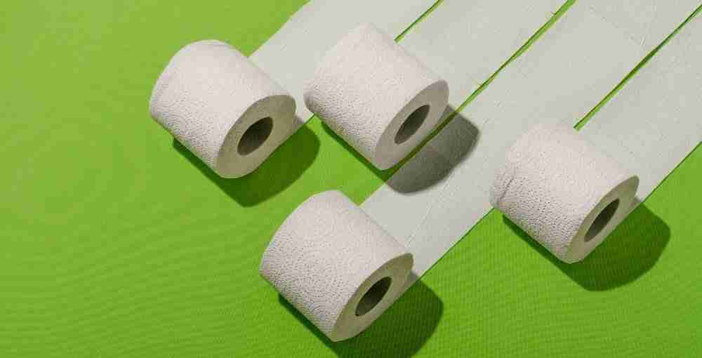 Hemp Toilet Paper, a Solution for a Sustainable World